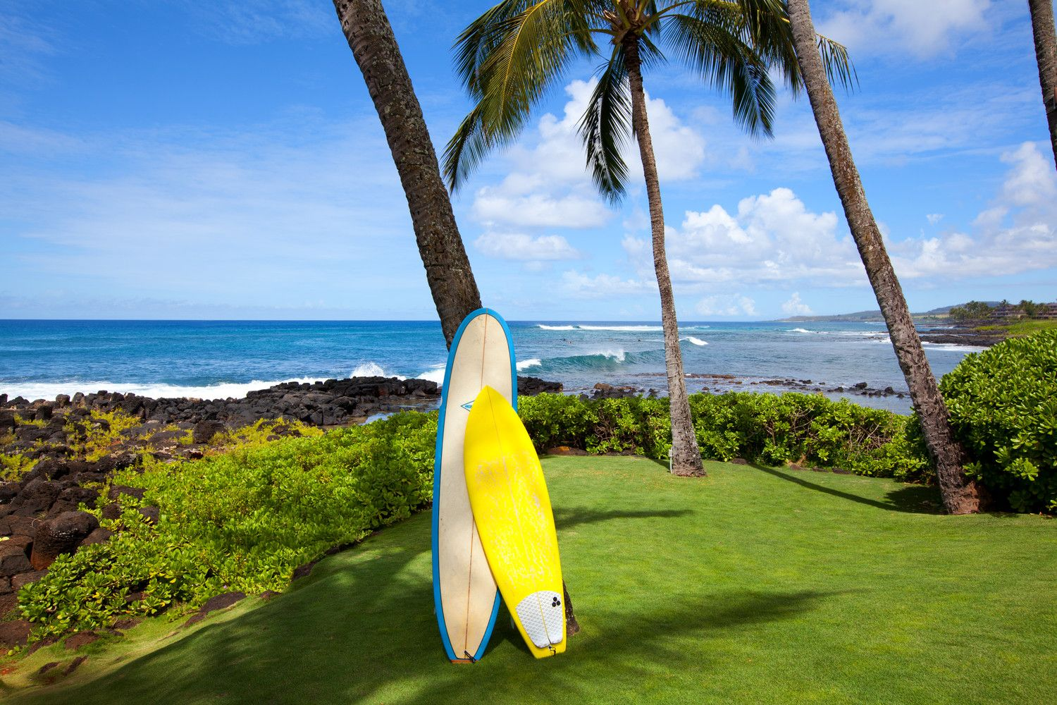 Poipu Beach Hotels - Island Activities